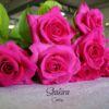 shakira-2